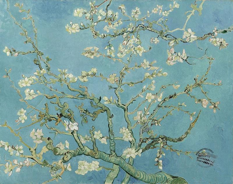La primavera: simbolo di rinascita